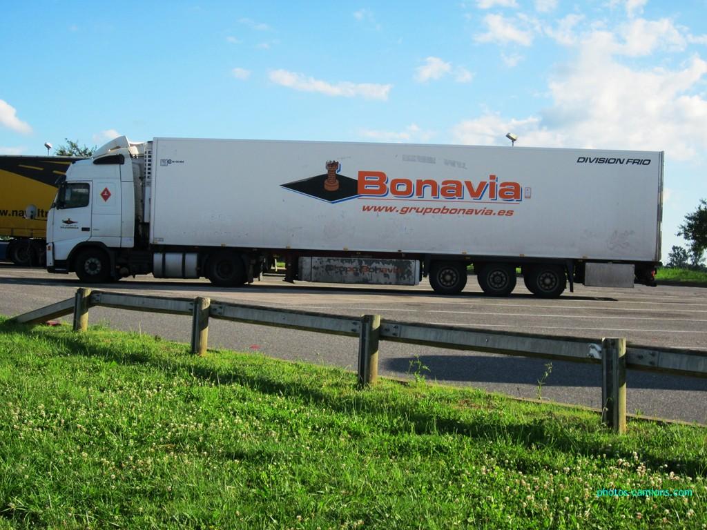 Bonavia  (Pedrola) - Page 2 307517photoscamions7Juillet2012100Copier