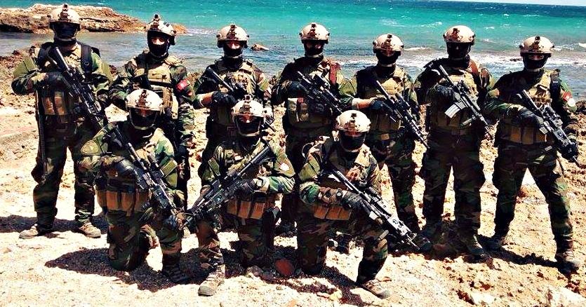 Armée Tunisienne / Tunisian Armed Forces / القوات المسلحة التونسية - Page 6 310382132411949727099528438931039987478484400058n