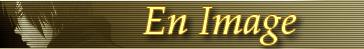 Sénarium - L'Ancienne Espèce 312127ImageTest2