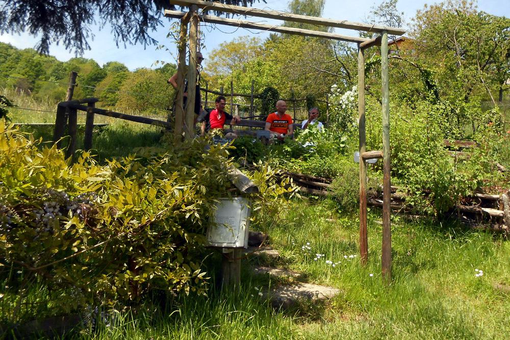 Les oranges outans fêtent le printemps en Alsace - 21 mai 2016 - Page 5 317351DSCN1585
