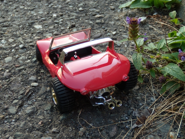 Lil Van Buggy 318220DSCN2302