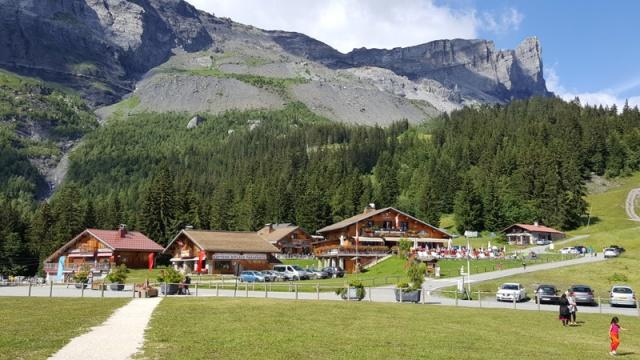 LC8 Rally western Alps - Stella alpina - Alps Tour 2016  319221selectionalpesTour11
