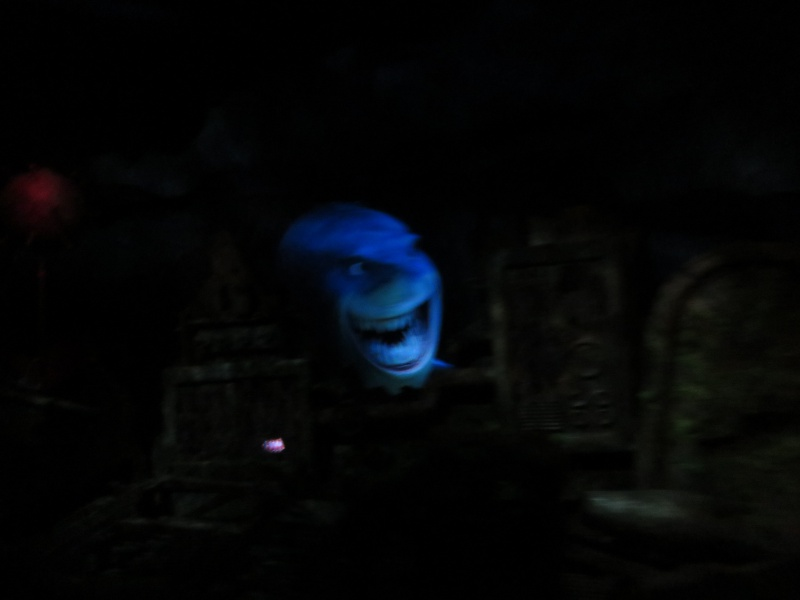 Walt Disney World + Universal Studios + Sea World + Busch Gardens Summer 2014 319924IMG0246