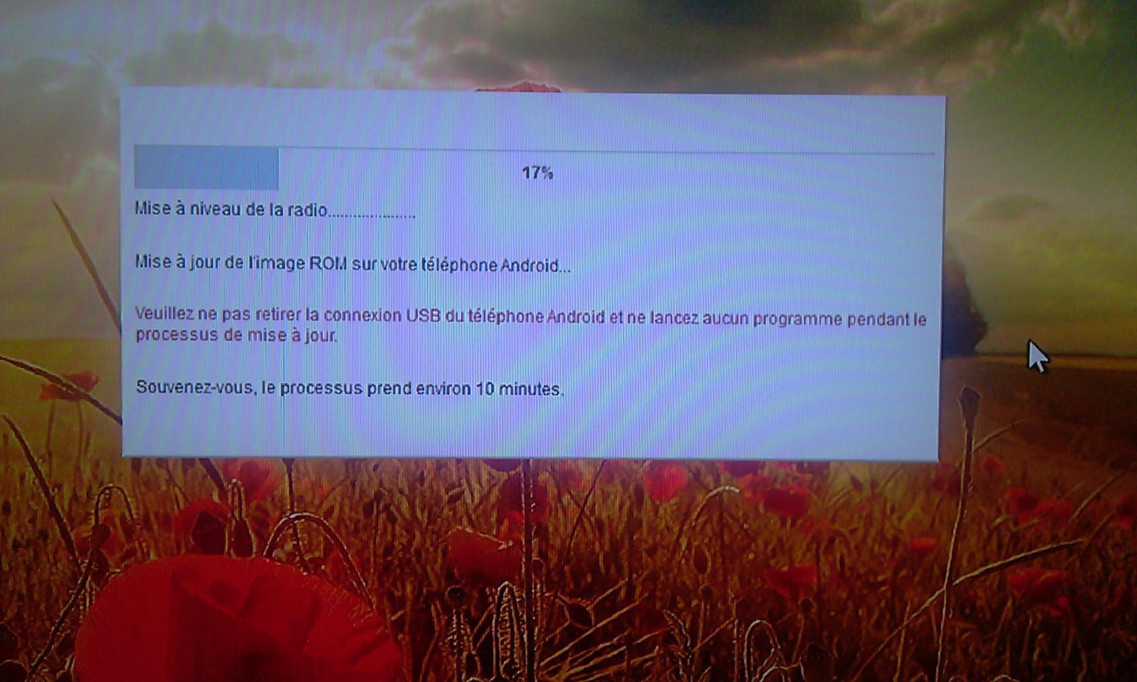 [Tuto] Downgrade vers GB, passage en S.Off, installation Leedroid GB 2.2.0 (en images) 320393DowngradeHC13