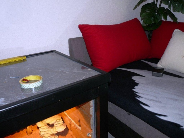 construction terra table basse (terminer) !!! 3212252212