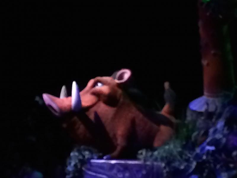 Walt Disney World + Universal Studios + Sea World + Busch Gardens Summer 2014 - Page 4 322803IMG2762