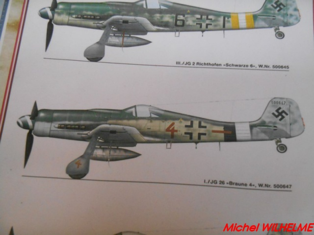 FOCKE WULF 190 D9  kit force of valor 1/72 323141DSCN7525Copier