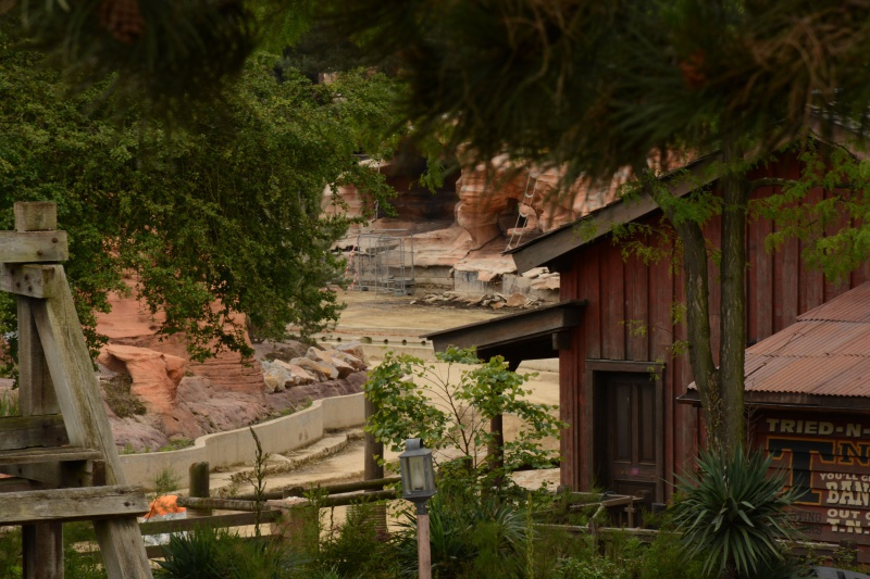 Big Thunder Mountain - Réhabilitation [Frontierland - 2015-2016] - Page 37 324330Disney220616015
