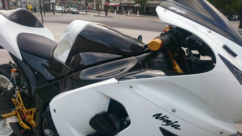 ZX6R 2005 WHITE - Page 2 3272651116819015919370144062134513382457734371744n