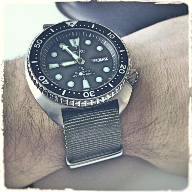 Votre montre du jour - Page 6 330446TurtleSRP77711
