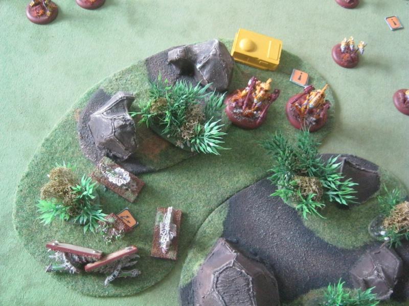 Assaut sur Zebra (campagne narrative) - Page 2 331142IMG0212