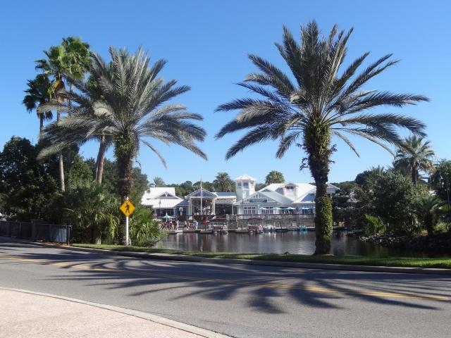First Visit WDW/Miami/Key West halloween 2013 - Page 4 332848DSC03681