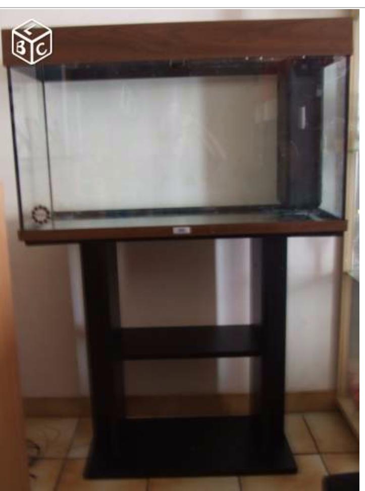 [URGENT] Avis aquarium d'occasion 332941892