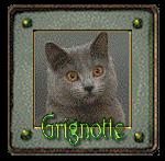 Suggestion pour avatar 334798grignotte2