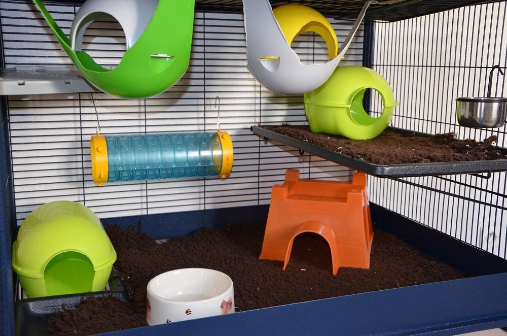 Photos de vos cages 336463DSC4110