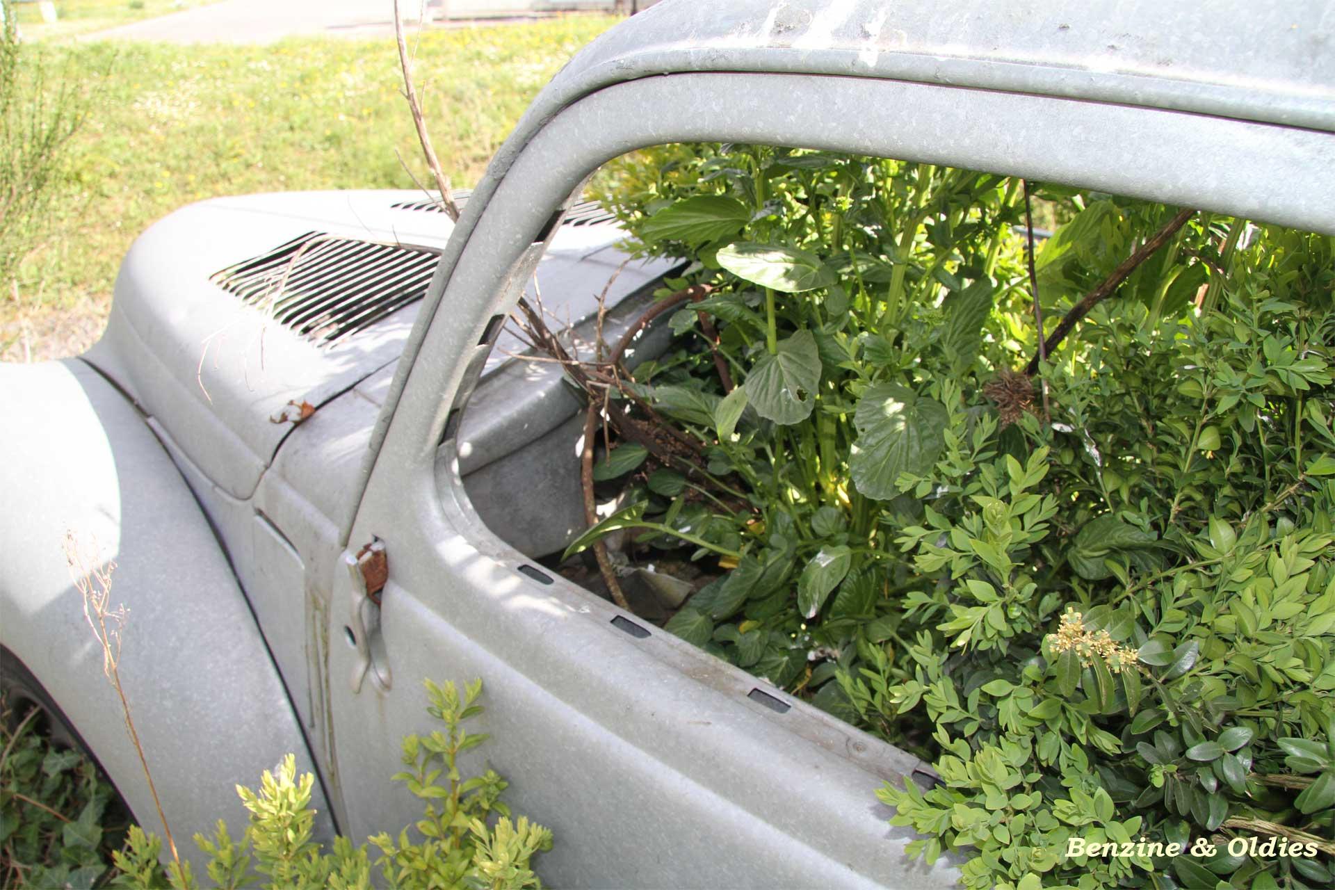 une Simca 6 carrosserie aluminium oubliée dans la nature - Simca6 - Page 2 338440simca6street37w19201280