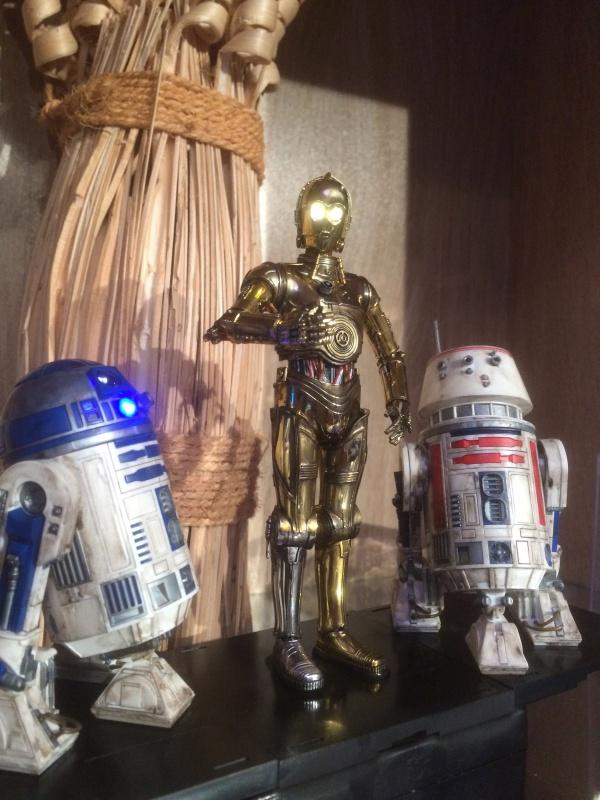 R2-D2 et C3-PO (et R5-D4) 341704IMG0252