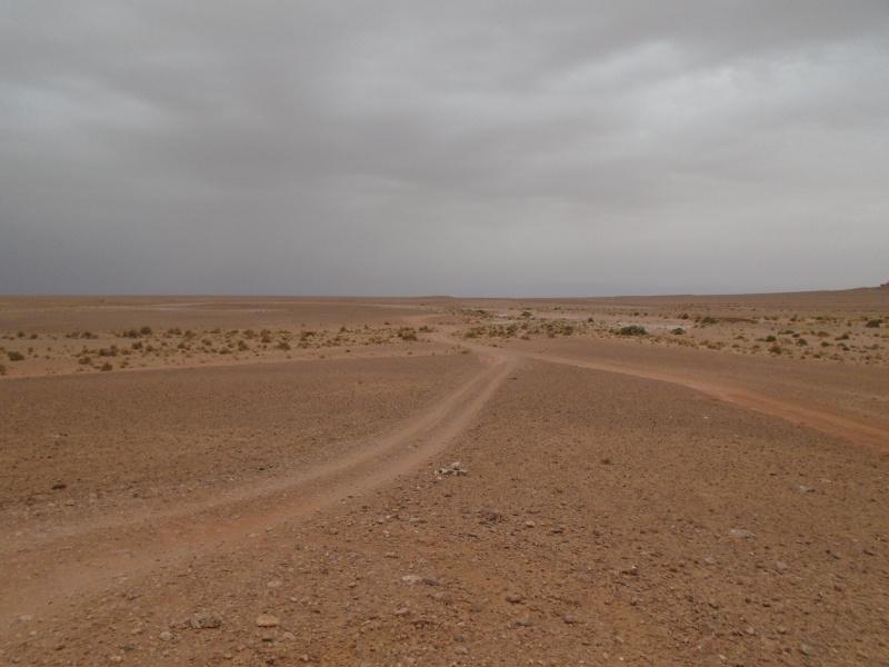 Maroc 2016 de Franck, Speedy et Maxou 344831DSC00473