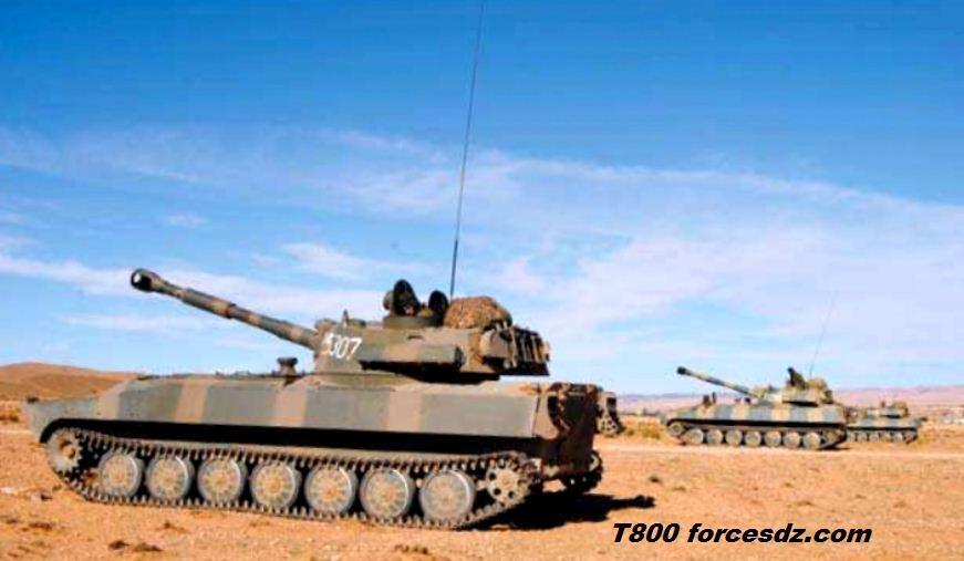 القوات البرية الجزائرية  34799612e