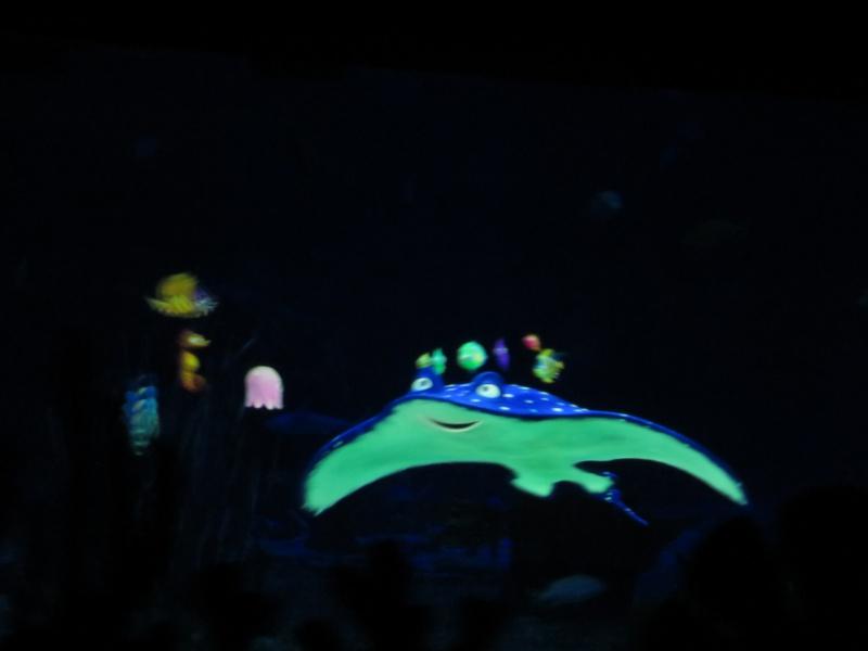 Walt Disney World + Universal Studios + Sea World + Busch Gardens Summer 2014 349057IMG0250