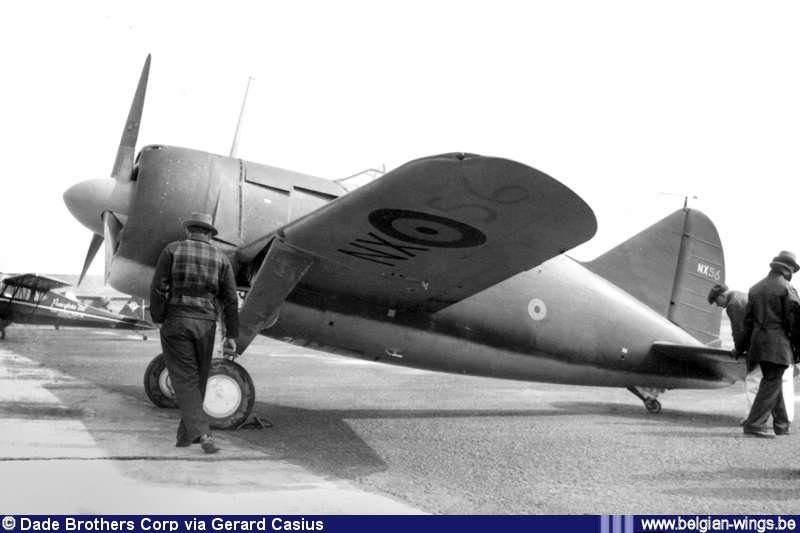 Brewster B-339B Buffalo 1/48 Tamiya.....Terminé! 351304NX56B2