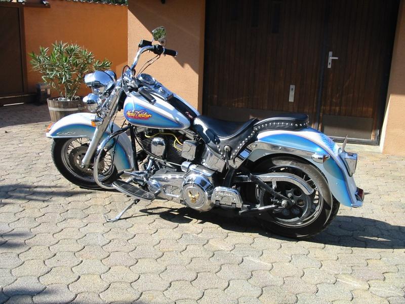 Combien de Softail sur le forum Passion-Harley - Page 12 351981200704100001