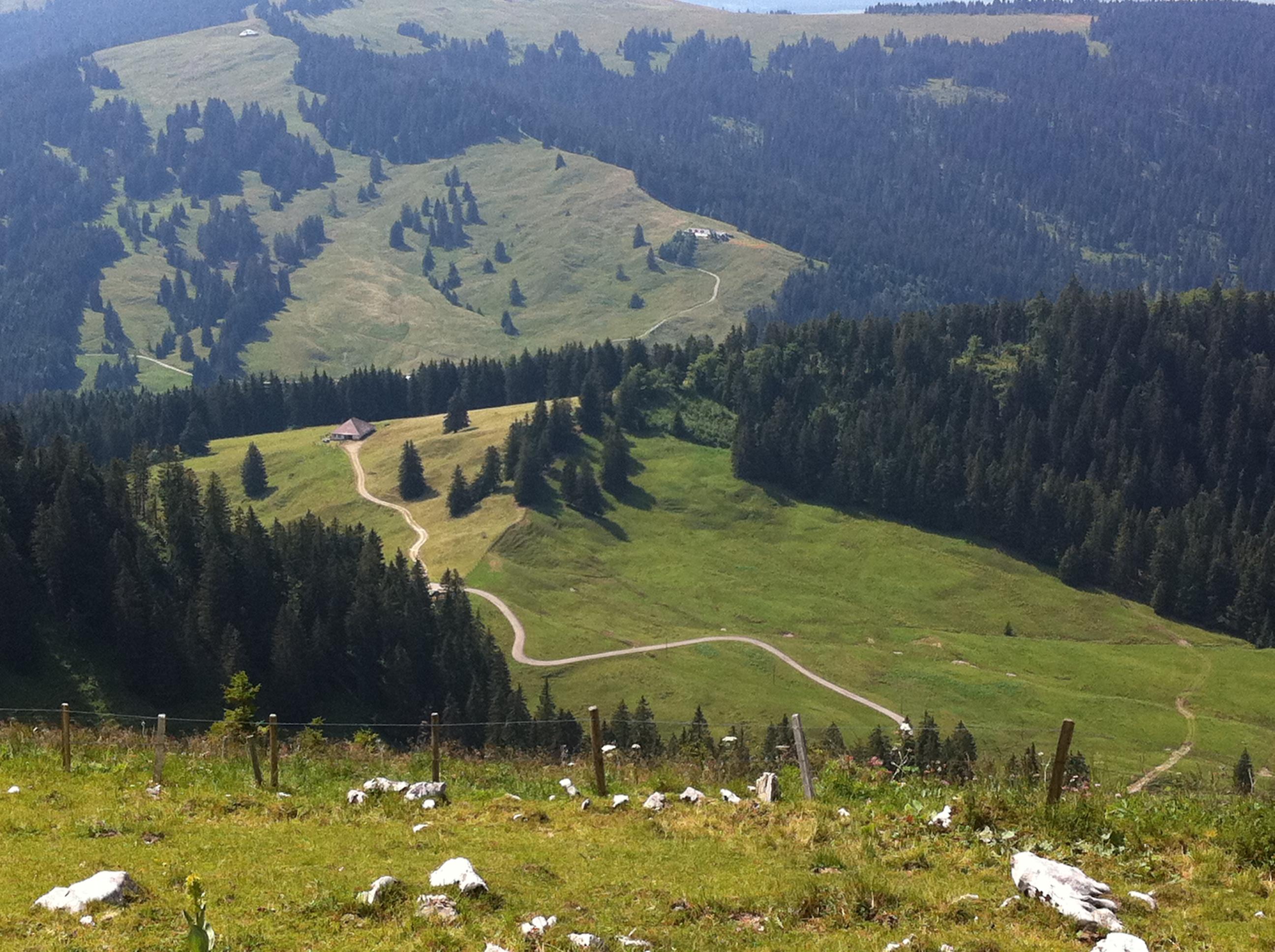 Un petit tour en Suisse? - Page 2 352020174