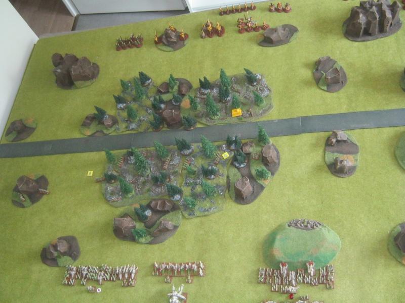 Assaut sur Zebra (campagne narrative) - Page 2 355287IMG0391