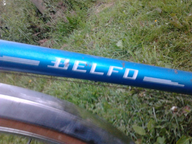 BELFO mixte 10vit 1976 357632Photo0927