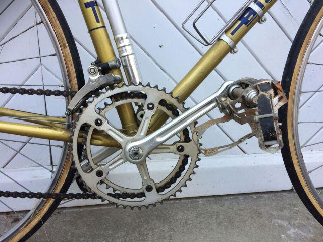 Bianchi doré 1978 358269bianchi2