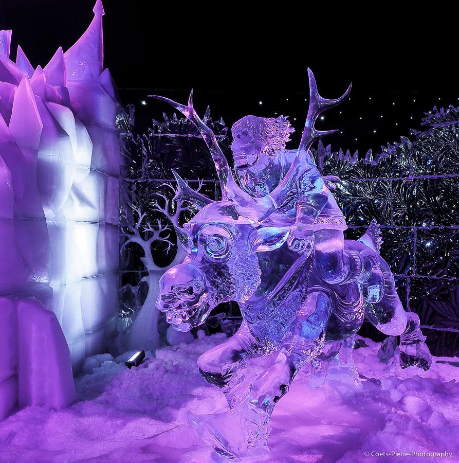 Sculptures sur glace à Bruges 2013: vos photos 358919A012583
