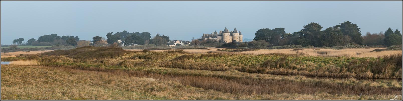 Morbihan: Suscinio, la plage 359004LR6P3130075Panorama