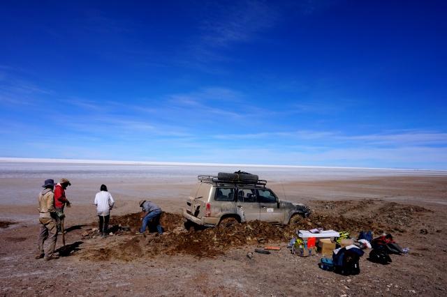 Missions scientifiques au Sud Lipez et au Salar d'Uyuni en Bolivie 364732DSC00527