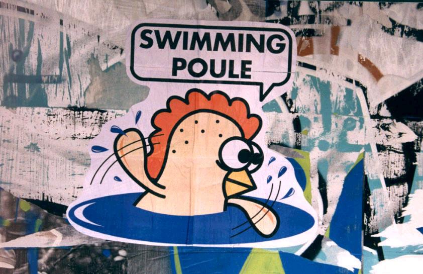 ddistance - Page 5 369181swimmingpoulecopy