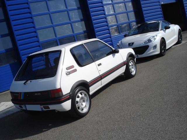 Nuancier peinture carrosserie 205 GTI 370116blancbanquise