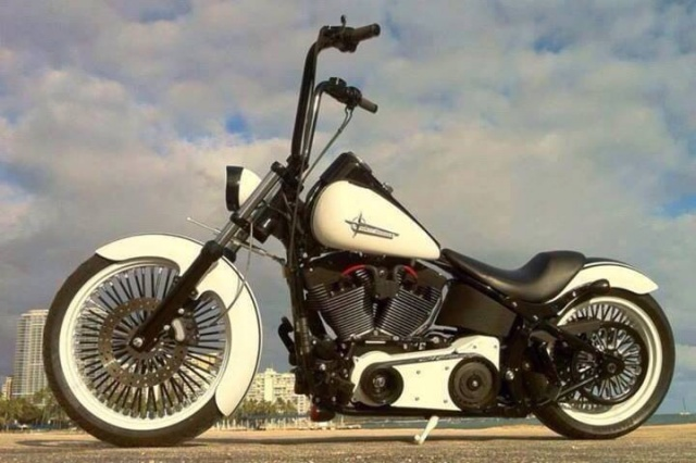 PHOTOS de Beaux Softails, de moches & de Bizarres.. - Page 5 379381image