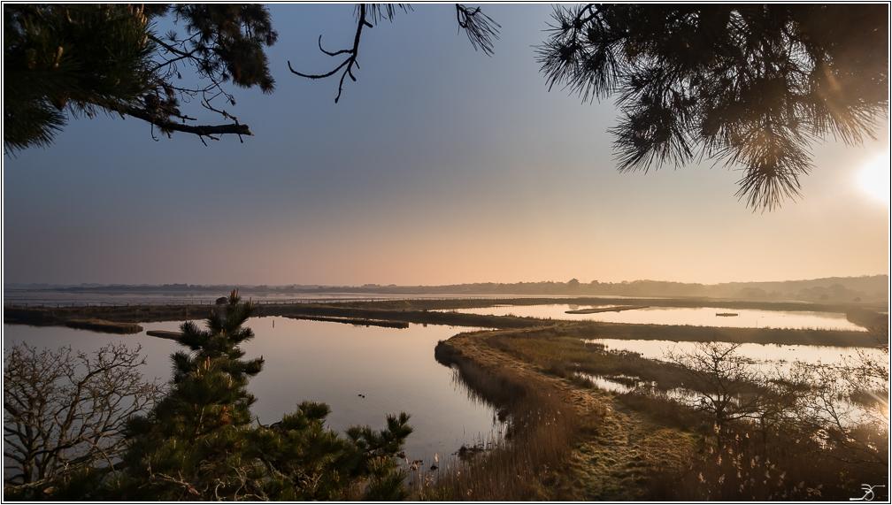 Morbihan, Le Duer, sentier cotier 379732LR6P3180002