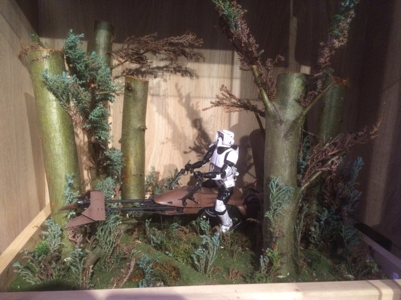 SCOUT TROOPER et SPEEDER BIKE 382842IMG0357