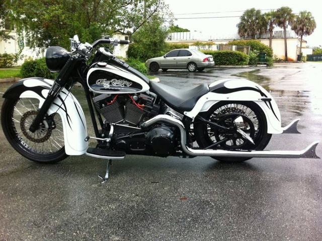 PHOTOS de Beaux Softails, de moches & de Bizarres.. - Page 7 384093image
