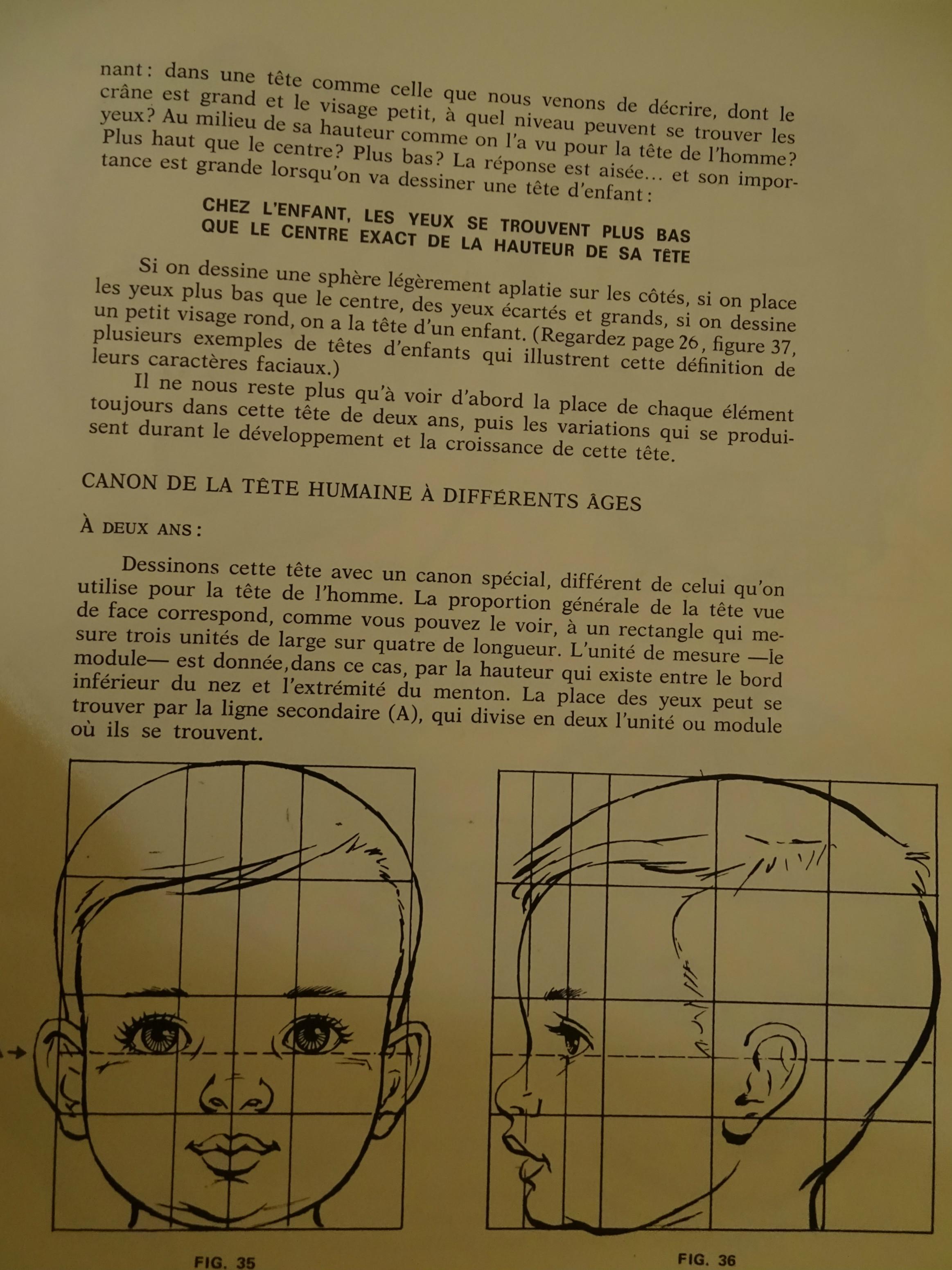 Canons de la tête humaine (Bébé, enfant) 386530canonBb