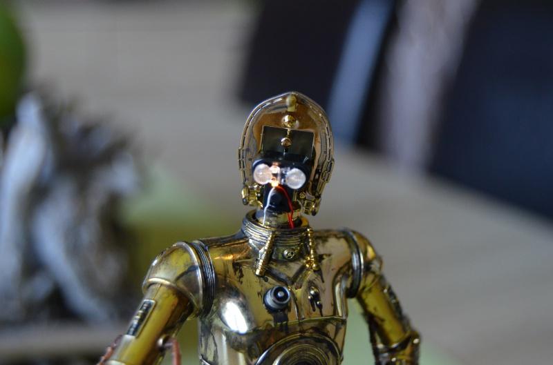 C-3PO de Bandai - Page 2 388227DSC0017