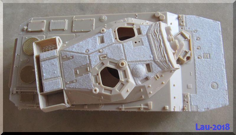 [Tiger Model] AMX-10RCR réf. 4602 - 1/35 392371ZoneAD3