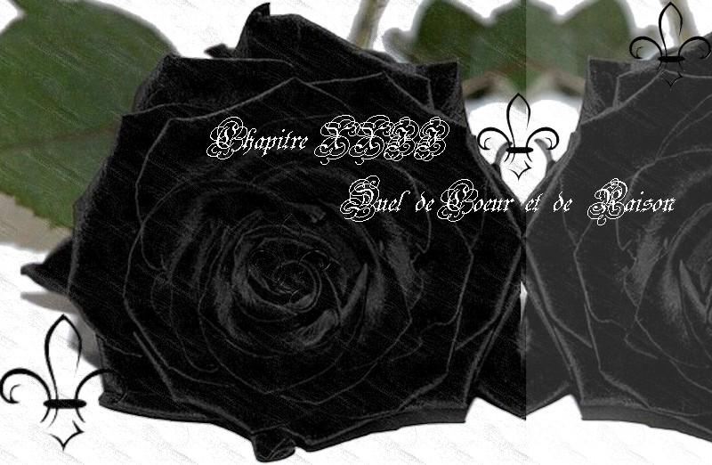 L'univers graphique d'une Rose - Page 13 394749ChapitreXXIIRNdBcover