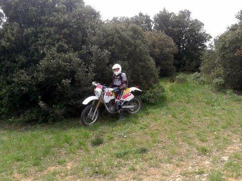 Sortie TT du Team 66 - Vita Cathari - Page 2 39670820150502134819