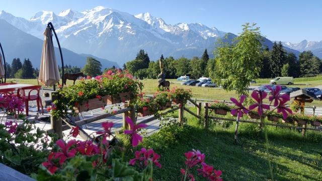LC8 Rally western Alps - Stella alpina - Alps Tour 2016  397487selectionalpesTour22