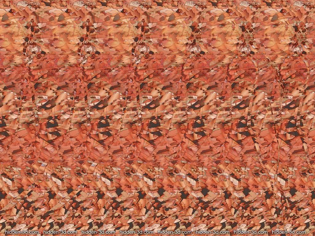 Images en 3D (stéréogrammes) 399061Stmoinsfacile02