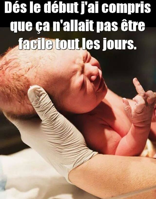 HUMOUR - blagues - Page 12 399209Pasfacile