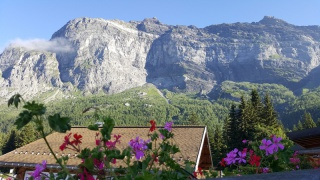 LC8 Rally western Alps - Stella alpina - Alps Tour 2016  399728selectionalpesTour23