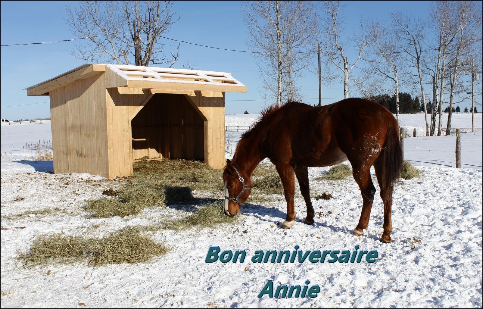 Bon anniversaire Annie 405048carteAnnie