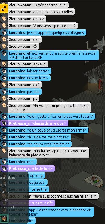Rapport d'action RP de Louphino. 405389rp8